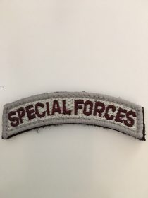 SPECIAL FORCES TAB PATCH
